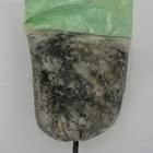 Picture of Frozen Okazi leaf 200g (Gnetum Africanum)