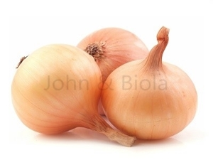 Picture of Fresh Onion