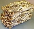 Picture of Tusk Stockfish Osan Medium-Large 20/50cm (Brosme brosme) - WHOLESALE BAG 45KG