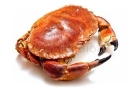 Picture of Fresh Whole Brown Crab (Cooked - 1 Crab)